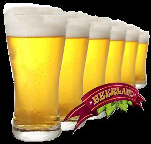 beer_PNG2366-300x285